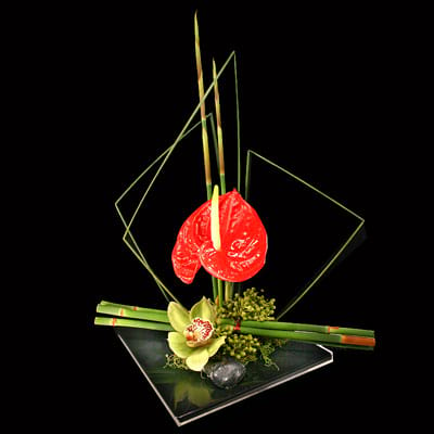 Ikebana Flower Arranging Roses Are Red Auckland Florist